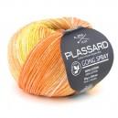 PLASSARD GONG SPRAY 21