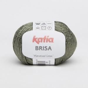 KATIA BRISA 62