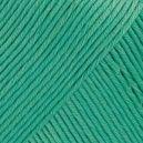 Muskat Vert menthe 03
