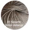 Régina Azur Noisette foncé mélangé 81