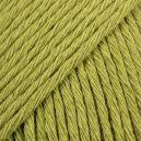 DEMI Paquet Cotton light 11 vert