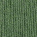 Cotton mérino Vert forêt 11